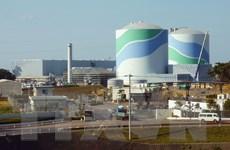 Nhật Bản: Điện năng từ hạt nhân sẽ dưới ngưỡng 20% vào 2030