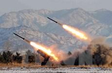 Mỹ: Hàn Quốc có thể bị dồn phải tự phát triển vũ khí hạt nhân