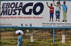 Tổ chức Y tế Thế giới tuyên bố Liberia thoát khỏi dịch Ebola