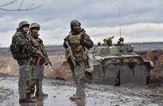 Ukraine: Phe ly khai yêu cầu củng cố quy chế đặc biệt cho Donbass