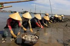 Xứ Thanh đẩy mạnh phát triển du lịch thông qua văn hóa biển