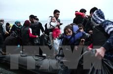 Italy kiến nghị EU tăng hỗ trợ giải quyết khủng hoảng di cư