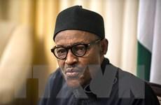 Tổng thống Nigeria cải tổ quân đội nhằm đẩy lùi Boko Haram