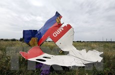 Nga đề xuất dự thảo nghị quyết Liên hợp quốc về vụ MH17