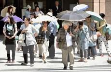 Số người nhập viện vì nắng nóng tại Nhật Bản tăng cao kỷ lục