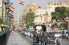 Ai Cập: Nhiệt độ lên ngưỡng 47 độ C khiến hơn 20 người tử vong
