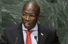 Guinea Bissau: Đảng cầm quyền đề nghị tái bổ nhiệm thủ tướng