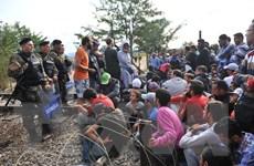Châu Âu, châu Phi nỗ lực ngăn chặn dòng người di cư vượt biển