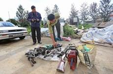 Lâm Đồng sẽ đề nghị khởi tố vụ sát hại voọc chà vá chân đen