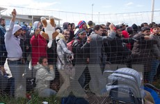 Cảnh sát và người tị nạn đụng độ ở biên giới Macedonia-Hy Lạp