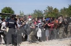 EU lập quỹ 2 tỷ USD hỗ trợ châu Phi giảm làn sóng người di cư