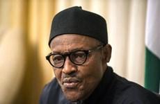 Nigeria, Pháp tăng cường quan hệ hợp tác trên nhiều lĩnh vực
