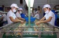 Việt-Ấn tìm cách gỡ vướng mắc gây cản trở cho trao đổi nông sản