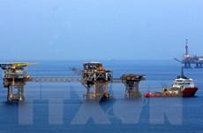 Tập đoàn Dầu khí Total Việt Nam tăng đầu tư tại TP Hồ Chí Minh