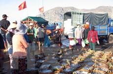 Kinh tế biển là lĩnh vực ưu tiên trong hợp tác Na Uy-Việt Nam
