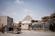 Thảm kịch rơi máy bay Nga giáng đòn nặng vào du lịch Ai Cập