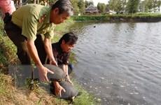 Đan Mạch sẽ tiếp tục hỗ trợ Việt Nam bảo tồn đa dạng sinh học