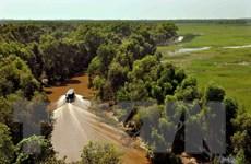 Bảo tồn đa dạng sinh học rừng thiên nhiên Trung Trường Sơn