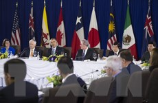 Các nhà lãnh đạo khẳng định quyết tâm sớm đưa TPP vào thực thi