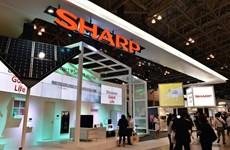 Hoạt động kinh doanh của Sharp thua lỗ tài khóa thứ hai liên tiếp