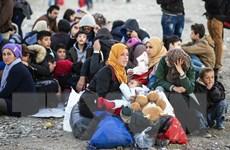 Ủy ban châu Âu chỉ trích Hy Lạp trong vấn đề kiểm soát biên giới