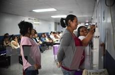 Công ty Ấn Độ phát triển vắcxin ngừa Zika đầu tiên trên thế giới