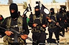 Maroc bắt 5 đối tượng lên kế hoạch gia nhập tổ chức IS