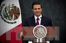 Uy tín của Tổng thống Mexico Nieto giảm xuống còn hơn 30%