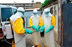 Guinea gấp rút đối phó với dịch Ebola sau khi virus này tái xuất