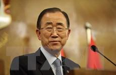 Liên hợp quốc kêu gọi Libya đoàn kết chống lại mối đe dọa IS