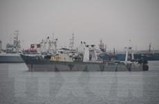 70 tàu cá Hàn Quốc phải về cảng vì Triều Tiên gây nhiễu GPS