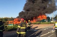 Đánh bom xe buýt ở Jerusalem làm hàng chục người bị thương