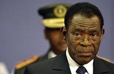 Gần 324.000 cử tri Guinea Xích đạo bỏ phiếu bầu tổng thống