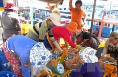Ngư dân Phú Yên trúng đậm các loại cá khai thác gần bờ