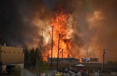 Gần 1.600 ngôi nhà bị thiêu rụi trong vụ cháy rừng ở Canada