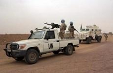 Năm binh sỹ gìn giữ hòa bình bị phục kích, bắn chết ở Mali