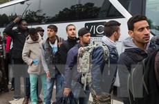 Thụy Sĩ lo Brexit khiến đàm phán về hạn chế người di cư đổ vỡ