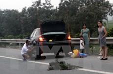 Đồng Nai chỉ đạo xử lý nghiêm đối tượng rải đinh trên Quốc lộ 51
