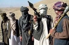 Afghanistan cáo buộc Pakistan tạo điều kiện cho các nhóm khủng bố