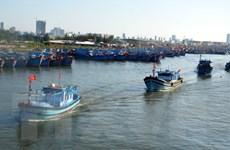 Ngư dân miền Trung tấp nập vươn khơi ngày đầu năm mới