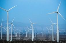 Kinh tế xanh là xu thế tất yếu của phát triển bền vững