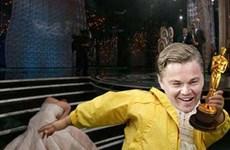 Oscar và những màn chế ảnh người nổi tiếng hài hước