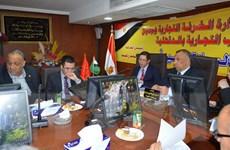 Doanh nghiệp Ai Cập tìm kiếm cơ hội hợp tác thương mại với Việt Nam