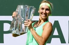 Ngược dòng ngoạn mục, Elena Vesnina nâng cúp Indian Wells