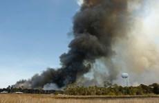 Mỹ: Bang Florida ban bố tình trạng khẩn cấp sau hơn 100 đám cháy rừng