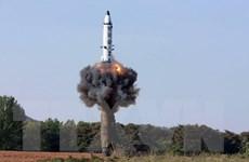Hàn Quốc sẽ đàm phán song song với thực thi trừng phạt Triều Tiên