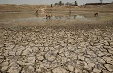 Kinh tế và chống biến đổi khí hậu là tâm điểm hợp tác EU-Trung Quốc