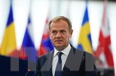 Hội đồng châu Âu cảnh báo Anh không thể hoãn đàm phán Brexit