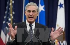 Tổng thống Mỹ không có ý định sa thải cố vấn đặc biệt Mueller