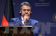 Đức: Tranh cãi ngoại giao vùng Vịnh là cơ hội chống tài trợ khủng bố